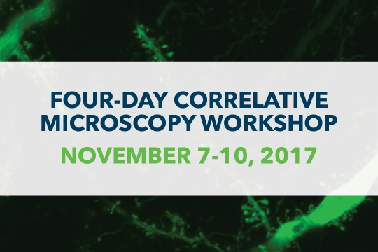 Four-Day Correlative Microscopy Workshop